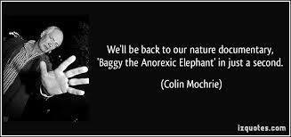 baggy elephat